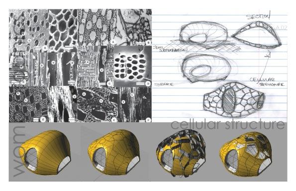 Cellular Structure